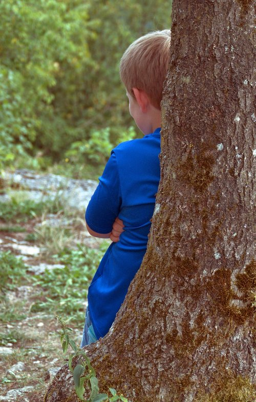 log  boy  hide