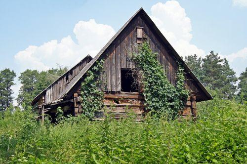 log cabin weathered overgrown
