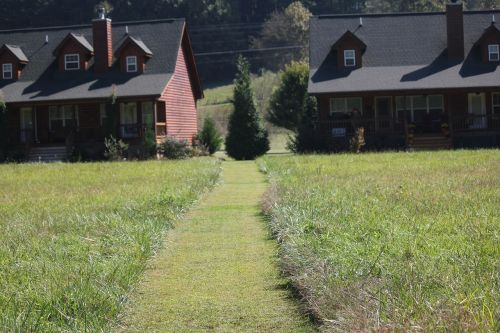 log cabin meadow mountain