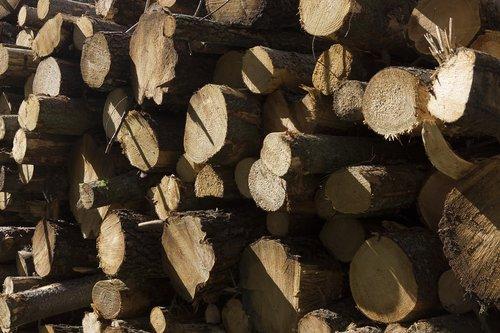 log pile  logs  wood