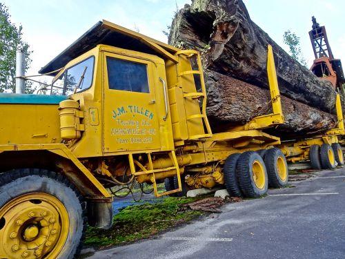 log truck transport trailer
