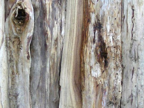 Log Wood Background