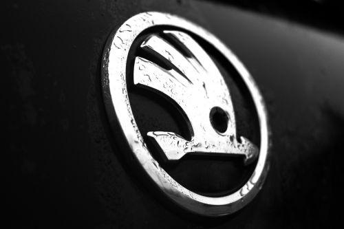 logo skoda car skoda