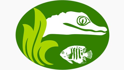 logo  jacare  fish