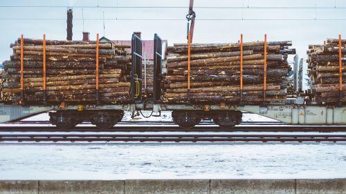 logs logging freight