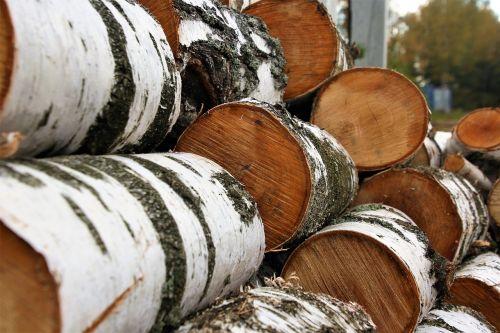 logs hack birch logs