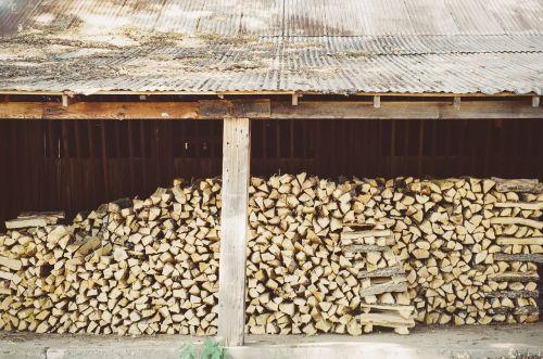 logs trunks wood