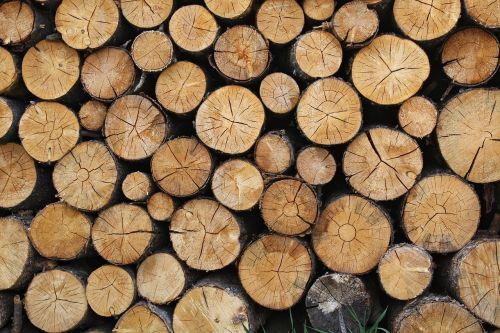 logs timber wood