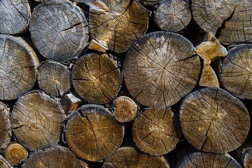 logs lumber timber