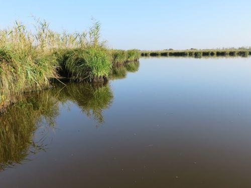 loire atlantique brière marsh