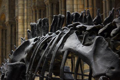 london museum history