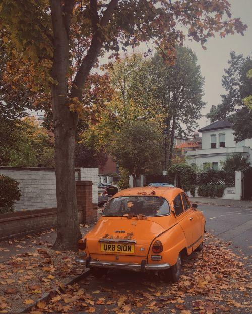 london street autumn