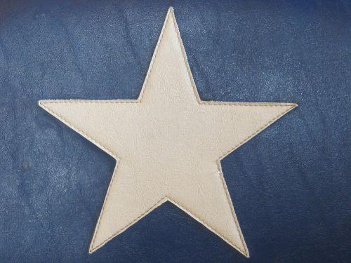lone star state texas lone star