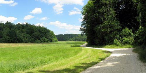 lonetal,sausas slėnis,vasara,kraštovaizdis,swabian alb,Hohlenstein,Vokietija,takas,pieva,miškas,medžiai,žygiai,žygis,kviečiantis