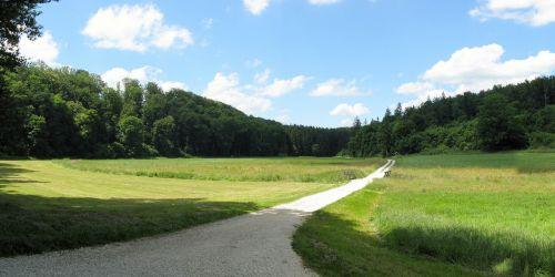 lonetal,sausas slėnis,vasara,kraštovaizdis,swabian alb,Hohlenstein,Vokietija,takas,pieva,miškas,medžiai,žygiai,žygis,kviečiantis,laukai