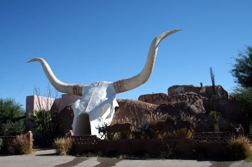 longhorn arizona southwest