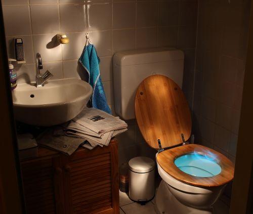 loo wc toilet