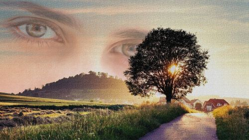 look graphics photomontage