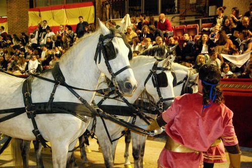 lorca andalusian horses hitch