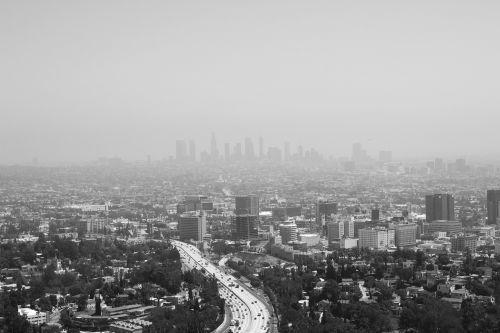 los angeles city landscape
