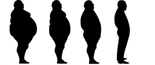 lose weight fat slim
