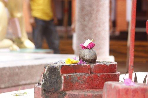 lotah  religion  flower