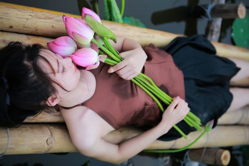 lotus flowers goods lotus