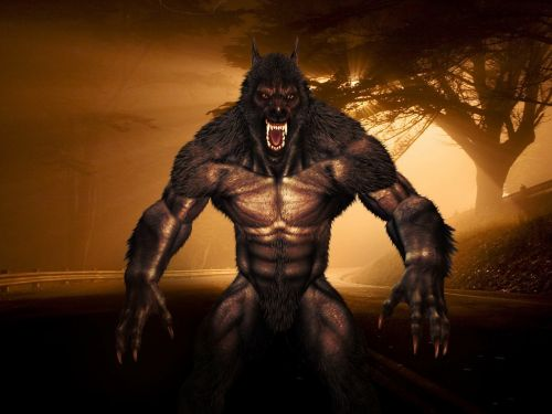 loup-garou,adalwolf,vilkolakis,monstras,Halloween,žmogus-vilkas,vilkas,žmogus-vilkas,baimė,žvėrys,siaubas,fantastinis