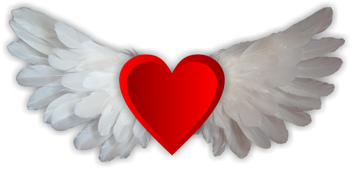 love love wings heart