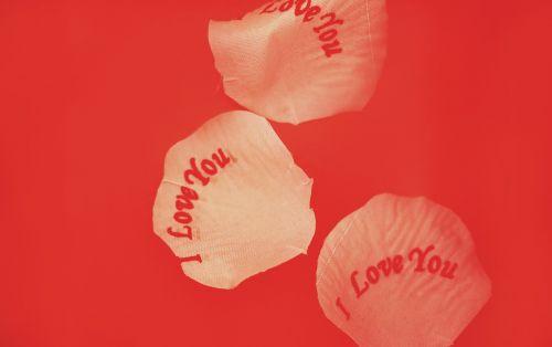 meilė,romantika,romantiškas,valentines,raudona