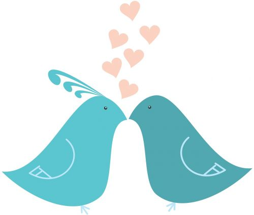 love heart feathers