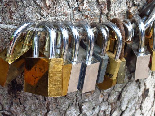 love locks love tree castles