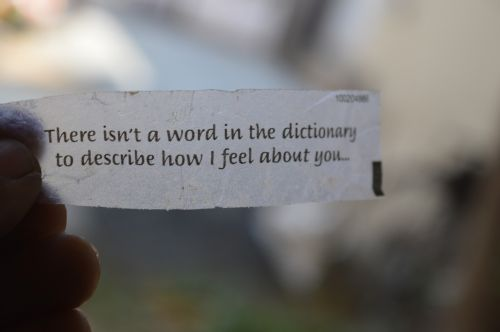 love quote love word