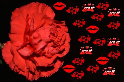 Love Red Hearts Love Flowers Art