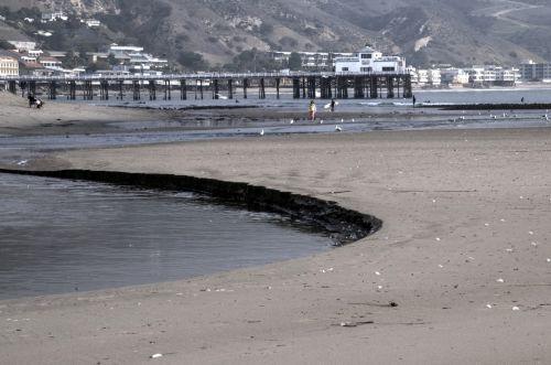 Low Tide Cutaway