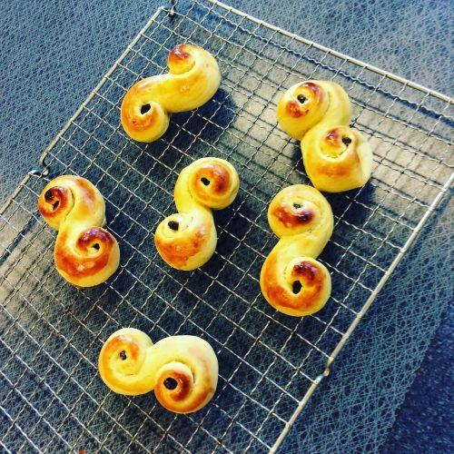 lucia lussekatter freshly baked