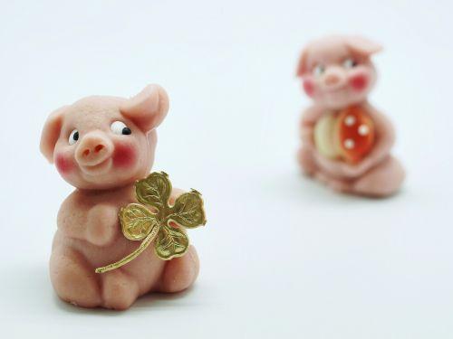 luck piglet lucky pig