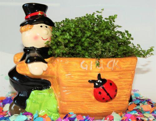 lucky clover lucky charm four leaf clover