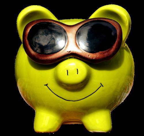 lucky pig cool sunglasses