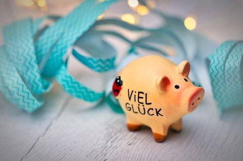 lucky pig  luck  lucky charm