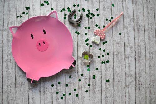 lucky pig  luck  piglet