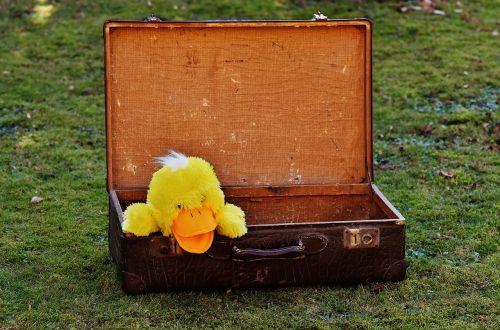 luggage antique duck