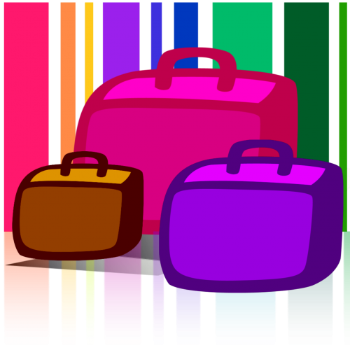 luggage bags baggage