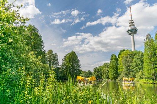 luisenpark  park  mannheim