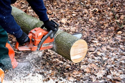 lumberjack chainsaw woodworks
