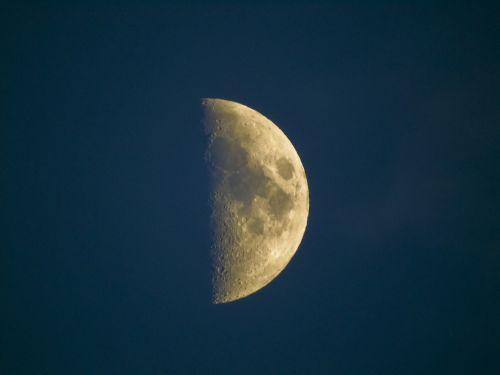 luna half night