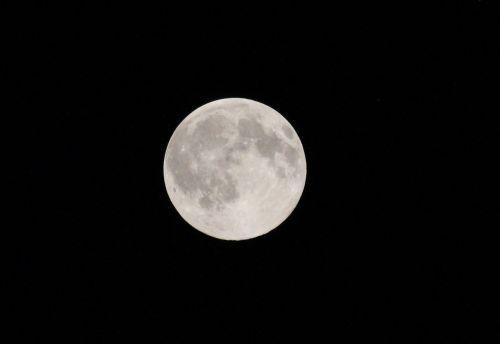 luna night full moon