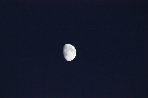 luna night evening