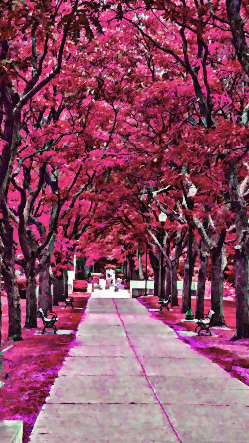 Lush Sidewalk #3