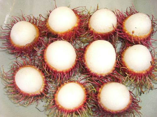 lychee fruit pointed